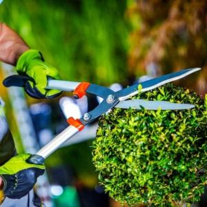 Corso Giardiniere Professionale